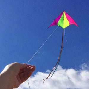 Flying a kite and sometimes life is not just that easy.