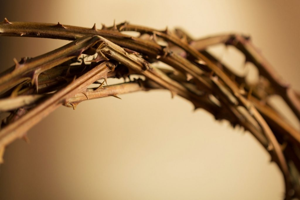 What does Palm Sunday represent and why do we celebrate it?